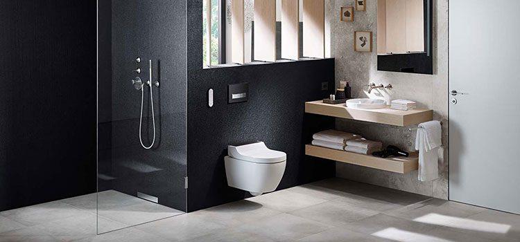 Douche à l'italienne dans jolie salle d'eau