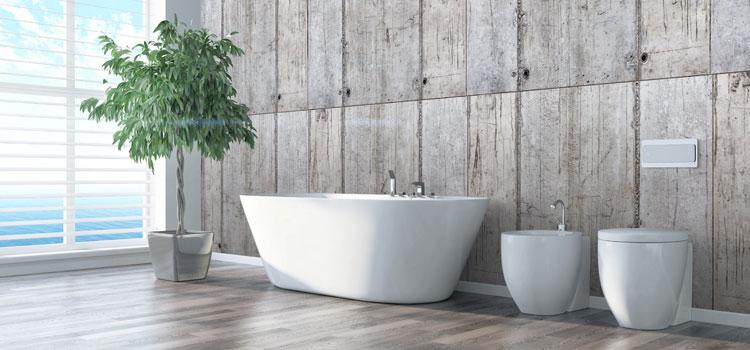 Plante verte dans vaste salle de bain