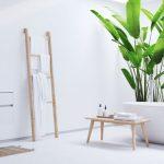 Quelles plantes installer dans ma salle de bains ?